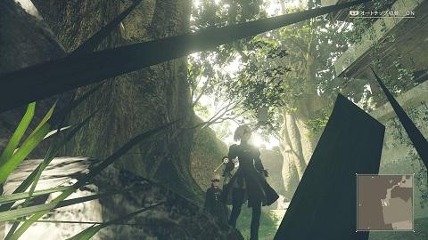 大森林ニーア
