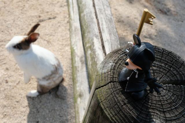 ミッキーとウサギ